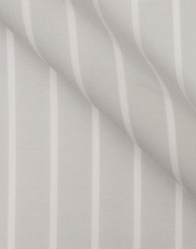 Sage Whale Stripe