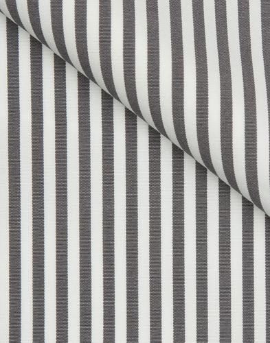 Grey Bengal